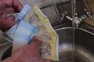 Средний размер субсидии в Украине более чем в два раза сократился за год - Госстат