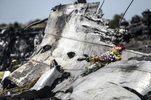 Крушение MH17: когда в Гааге представят новые результаты расследования