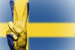 Москва непредсказуема: Швеция готовится к военному кризису - СМИ