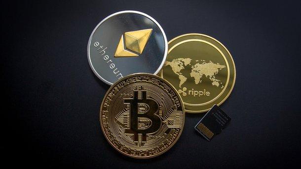 Криптовалюта набирающая популярность 2019 лучший индикатор для бинарных опционов более 80 прибыльных сделок