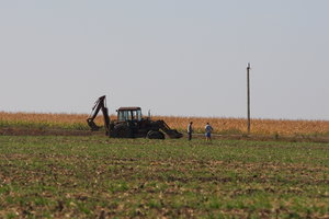 Отмена моратория на продажу земли: последняя попытка Рады и имидж Украины