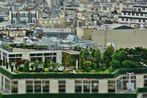 В Нидерландах массово создают парки на крышах