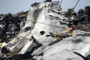 Нидерланды хотят отдельного суда над Россией за катастрофу MH17