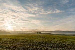 Порошенко резко высказался о моратории на продажу украинской земли
