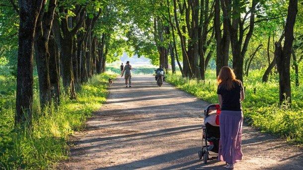 Солнечная Троица: какой будет сегодня погода в Украине
