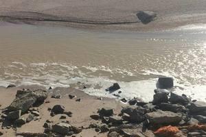 На лимане в Запорожской области назревает экологическая катастрофа
