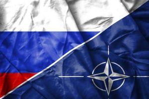 На переговорах с НАТО Россия поддержала претензии Венгрии к Украине