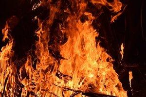 В Украине объявили высший уровень пожарной опасности