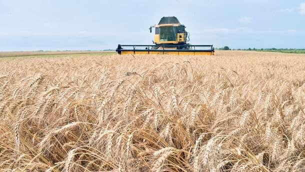 Вьетнам снял запрет на ввоз украинской пшеницы