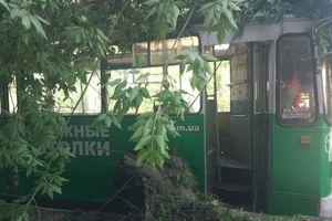В центре Запорожья дерево рухнуло на троллейбус с пассажирами