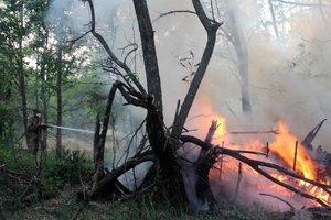 Как тушат пожар в Чернобыльской зоне: свежие фото и видео