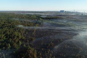 Пожар в Чернобыльской зоне: где повышен уровень радиации и есть ли опасность для Киева