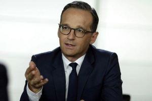 Глава МИД Германии выступает за введение миротворцев на Донбасс