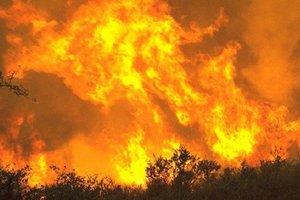 В Калифорнии бушуют сильные лесные пожары
