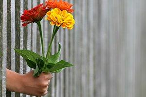 ТОП-12 признаков безнадежного романтика