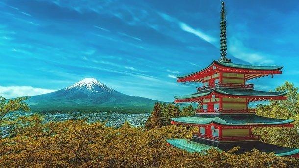В Японии муж вернулся к жене через год после кремации