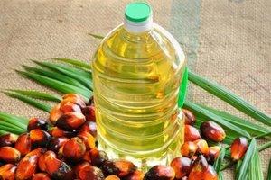 В ЕС откажутся от пальмового масла до 2030 года