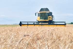 Засуха поднимет цены на хлеб и муку