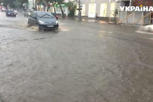 В Виннице сильный ливень затопил дороги и валил деревья на автомобили