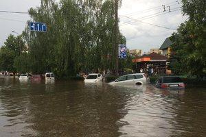 Луцк пережил страшный ливень: затопленные улицы и вырванные с корнем деревья