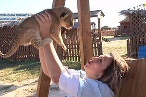 В курортном зоопарке бэби-бум: родились пять львят, ламы и пони