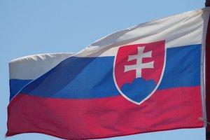 В Словакии арестовали украинца с венгерским паспортом