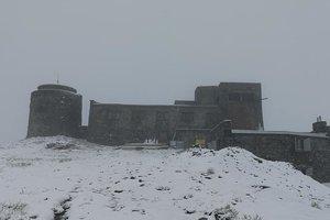 Перезимовать лето: в Карпатах неожиданно выпал снег, опубликованы фото