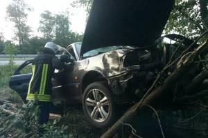 В Киевской области легковушка врезалась в дерево, погиб человек