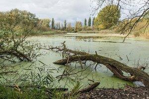 В Украине ожидается паводок и подъем уровня воды в водоемах