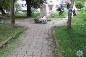 Стало известно, какие силы разрушили памятник Пушкину во Львовской области