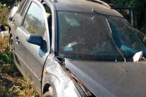 В Николаевской области автомобиль слетел в кювет: пострадали пять иностранцев