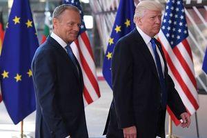 Встреча Трампа и Путина: Туск передаст просьбу президенту США по Украине