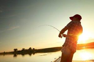 Бюджетный отпуск: комфортная рыбалка в Черкасской области