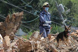 Мощные ливни в Японии: число жертв приблизилось к 200