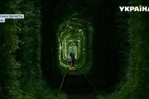 """Легендарный """"Тоннель любви"""" хотят сделать платным"""