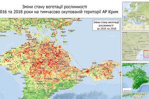 Крыму грозит экологическая катастрофа: на полуострове уменьшилась растительность