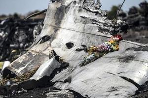 Обломки сбитого самолета. Фото: AFP