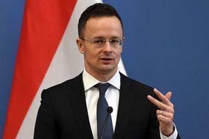Языковой вопрос: Сиярто выдвинул обвинения Киеву
