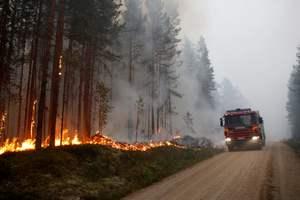 Швецию накрыла аномальная жара: страна страдает от лесных пожаров