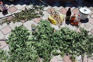 В курортном Бердянске изъяли крупную партию наркотиков: появились фото