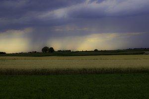Дожди прекратятся и вернется жара: синоптики дали прогноз до следующей недели