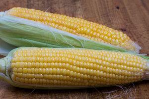 Лайфхак: как сварить самую вкусную кукурузу