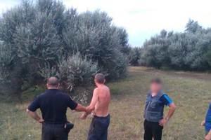 Пытался украсть козу: в Днепропетровской области мужчина с ножом напал на женщину