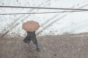В России выпал снег: в сети появилось видео