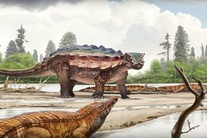 В США открыли новый вид динозавра: видео