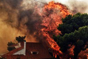 Греция отказалась от помощи Турции в борьбе с лесными пожарами