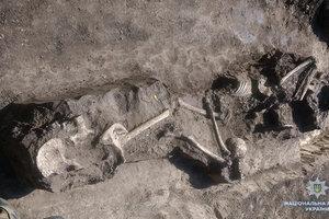 В Тернопольской области на территории предприятия нашли более десятка человеческих скелетов