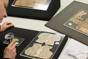 Тайну Базельского папируса разгадали спустя 500 лет