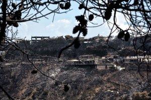 Греческий министр ушел в отставку после смертоносных пожаров