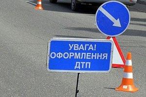В Запорожской области водитель мопеда врезался в дерево и погиб